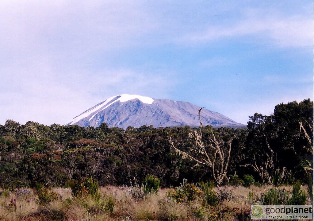 Der Kilimandscharo in Tansania