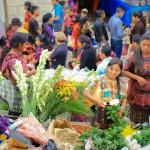 Reisebericht Guatemala entdecken, Teil 2