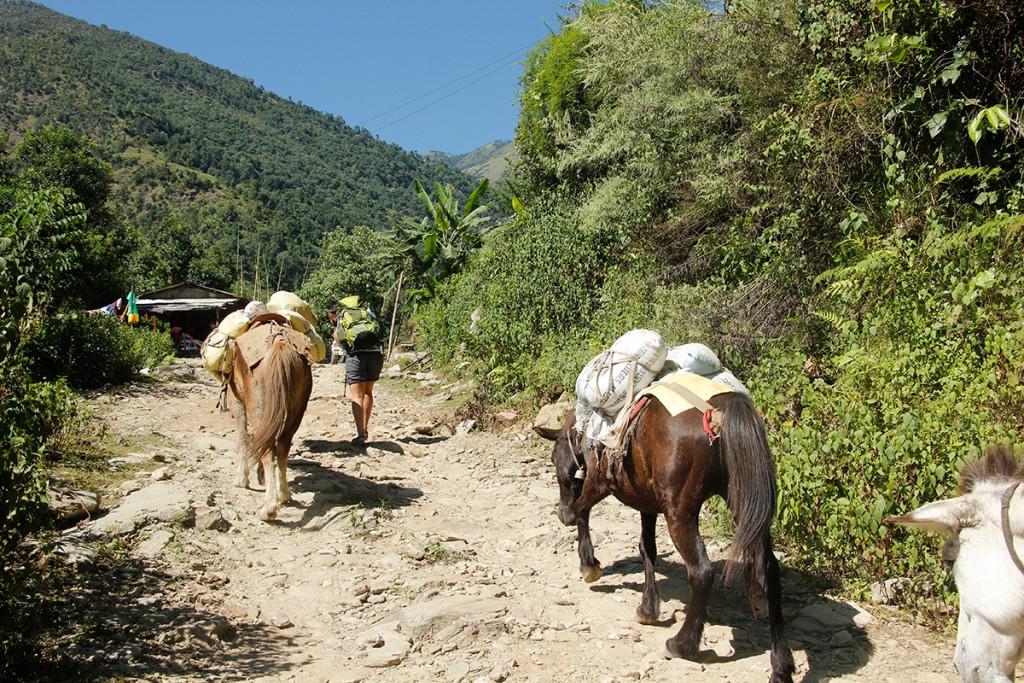 Trekking auf dem Annapurna Circuit in Nepal