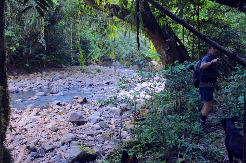 Der Fluss, der das Dschungelgrundstück