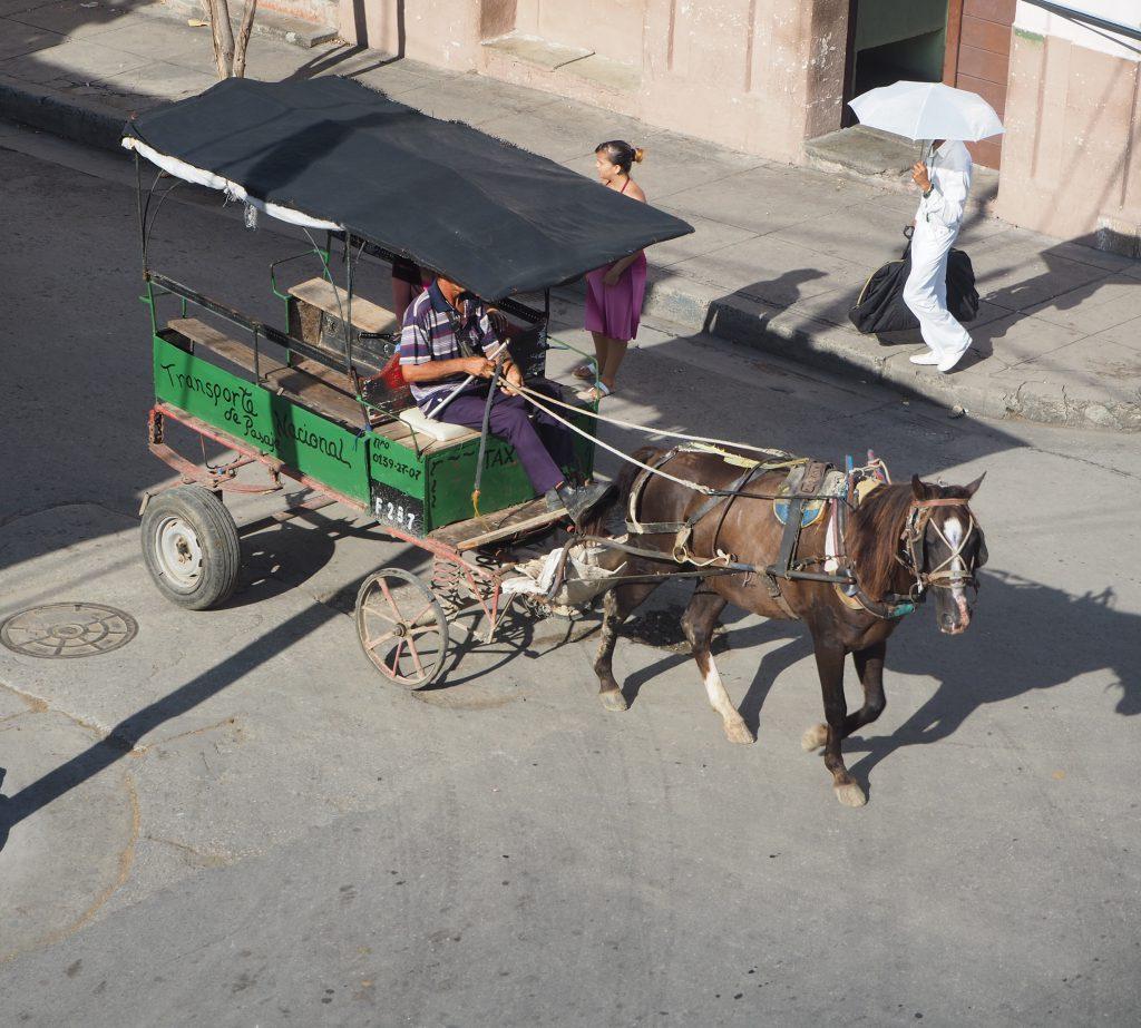 Pferdetaxi in Cienfuegos